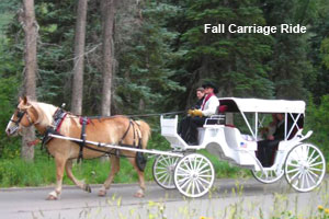fall_carriage